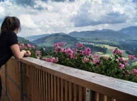 Auf-dem-Balkon-der-Allgäu-Sonne