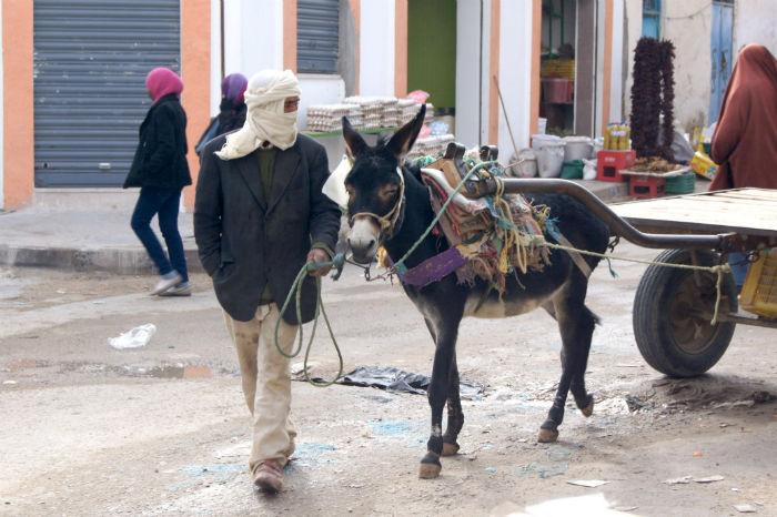 Djerba Reisetipps Tatouine