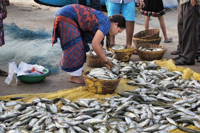 Tage in Goa Palolem Fischerfrau