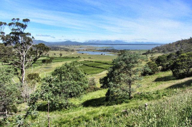 Tasmanien Reise 1