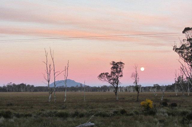 Tasmanien Reise 10