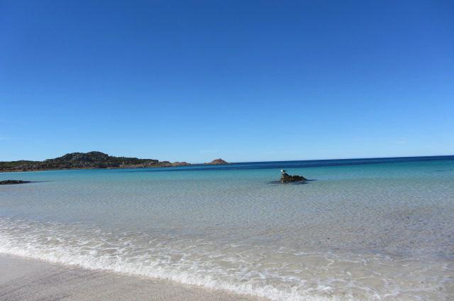 Tasmanien Reise 14