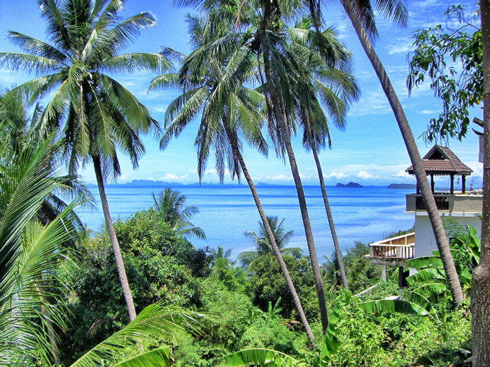 Backpacking Guide Koh Samui