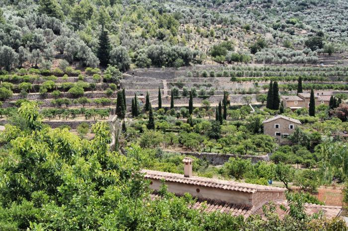 Urlaubsorte-auf-Mallorca-Fornalutx