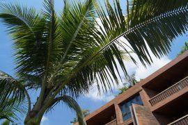 Willkommen zu Hause: Das Katamama Hotel Bali