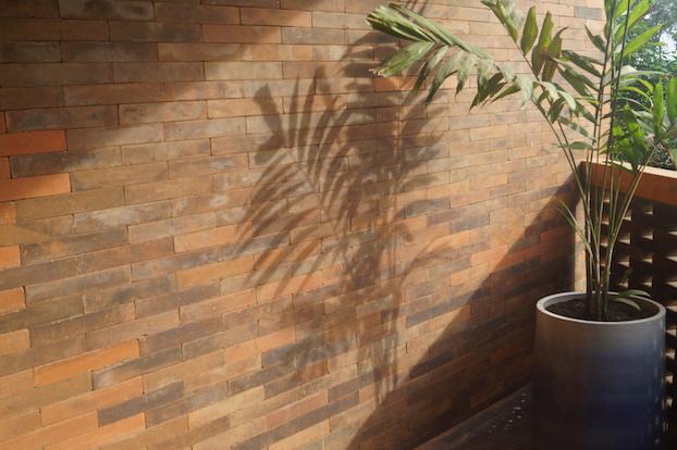 Katamama Hotel Bali Terrasse mit Pflanze