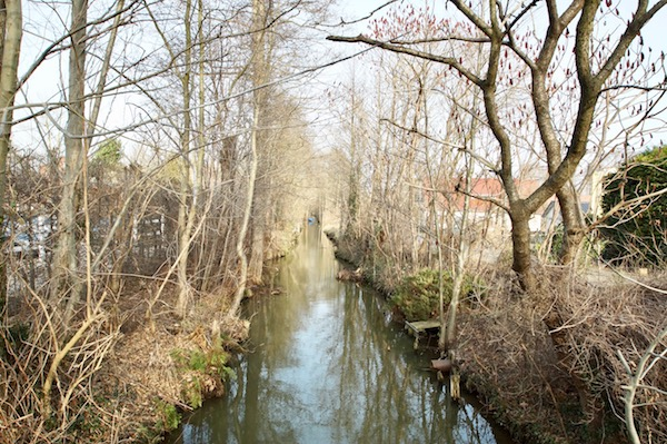 Wellness-Spreewald-Hotel-Bleiche-Resort-Spa-Landschaft